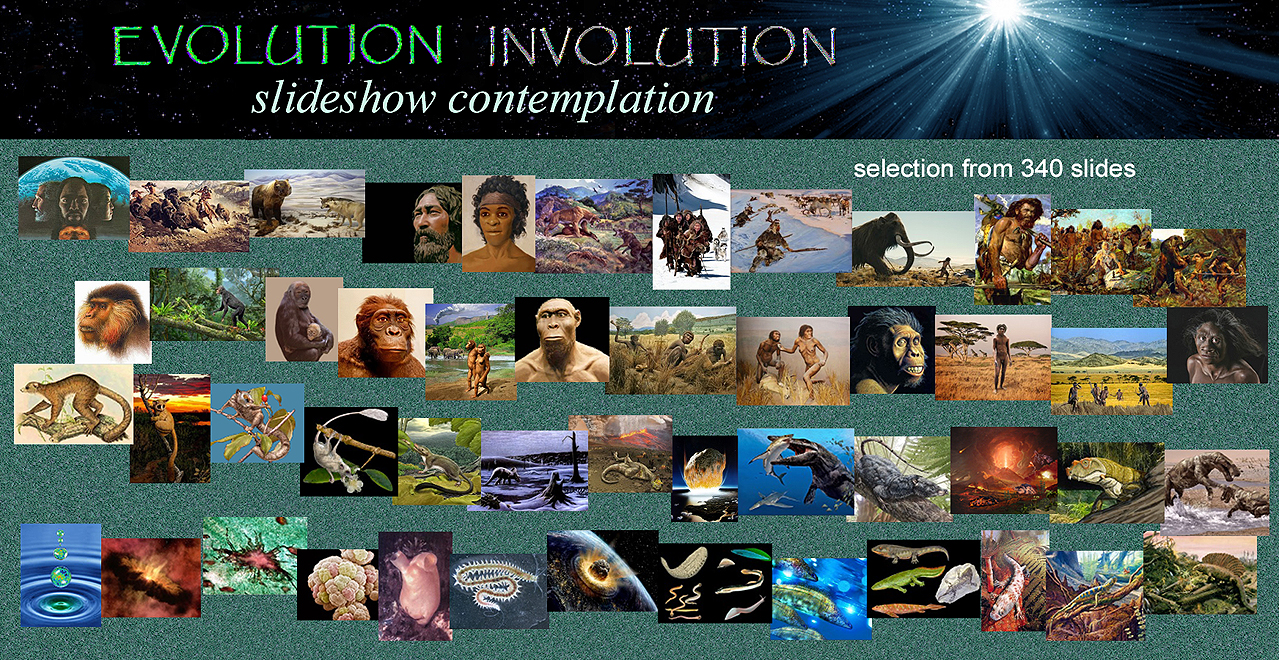evo invo slideshow map of selected images from 340 slides Evolution-Involution slideshow