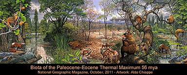North America Biota of PETM: Paleocene-Eocene Thermal Maximum - the rise of mammals and true primates