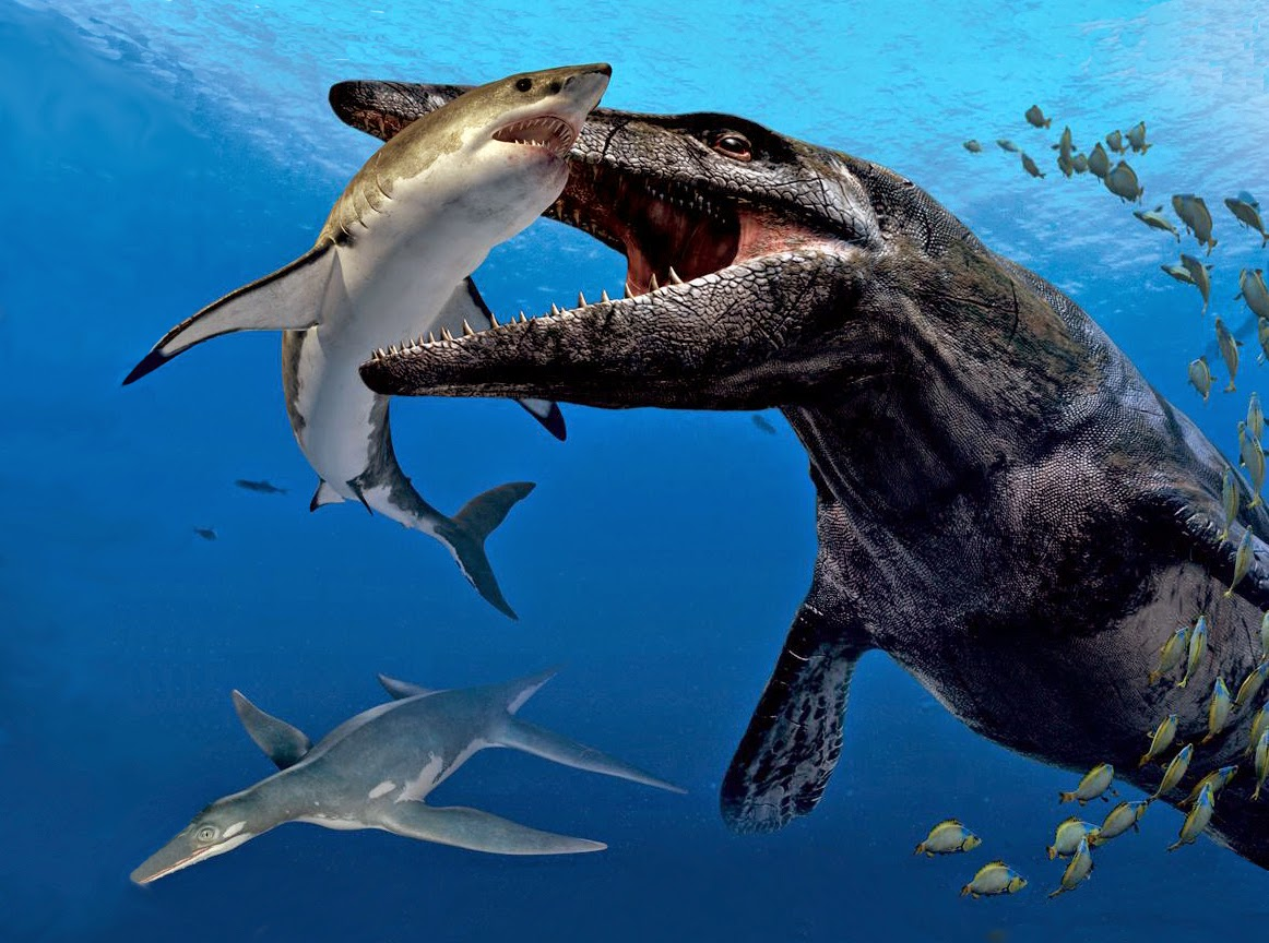 The gallery for --> Dunkleosteus Vs Mosasaur